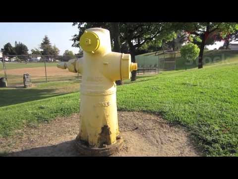 Yellow Colored Water Fire Hydrant at Public Park Location w/ Valve Parts | HD Stock Video Footage