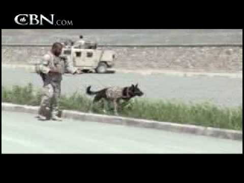 Special Forces Canine Sniffs Out Trouble - CBN.com