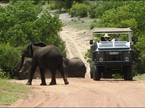 Chobe National Park, Botswana. Travel guide.