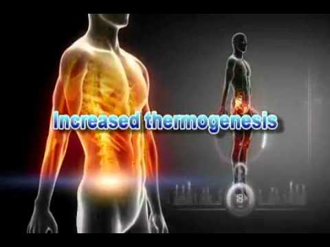 7 Keto Dhea Is In Slim Without Stim Best Weight Loss Supplement On The Market   Youtube video