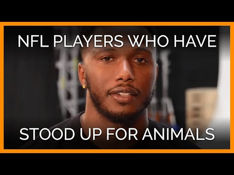 You might be surprised at some of the NFL players who have teamed up with PETA for animal rights. Whether playing defense or offense, these guys are tough enough to show their softer side....