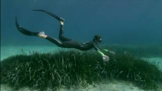 NEW VIDEO: Cressi celebrates his 70th anniversary. We decided with our crew at Les Films Engloutis with the support of CIPA Freediving Club to pay a t