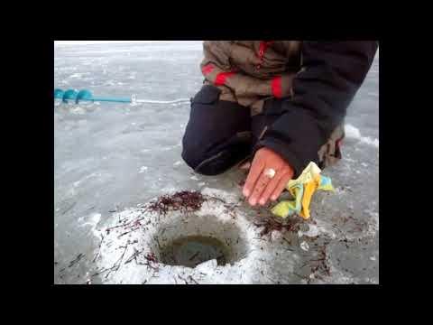 рыбалка на нижнекамском водохранилище