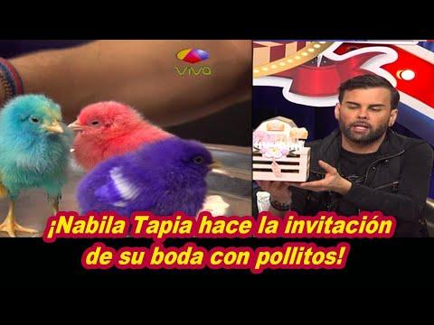 Polémica Por Invitación De Nabila Tapia Con Pollitos Reales En Su Interior
