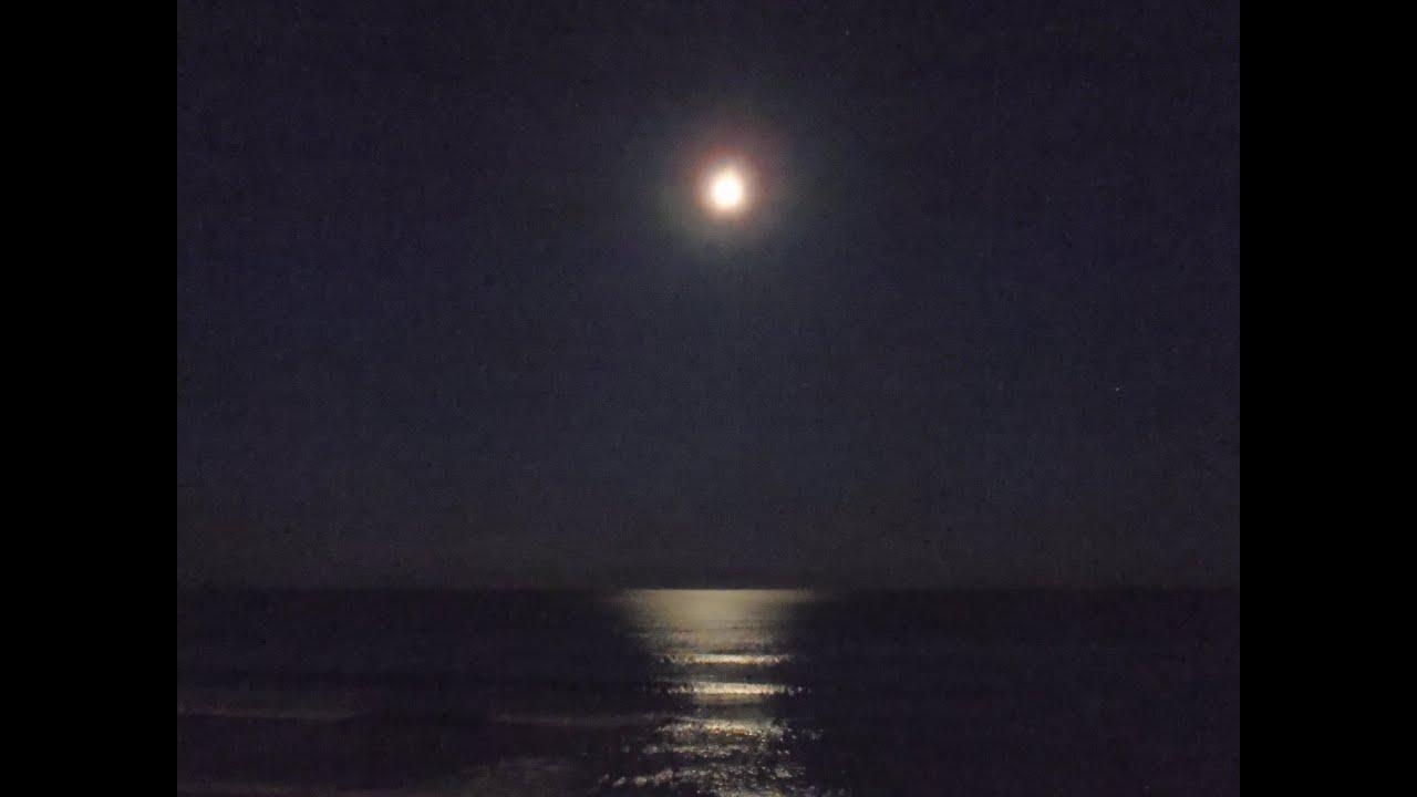 夜 月 海 画像