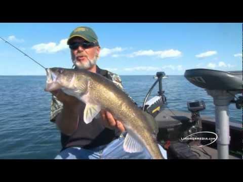 рыбалка на суспендер видео