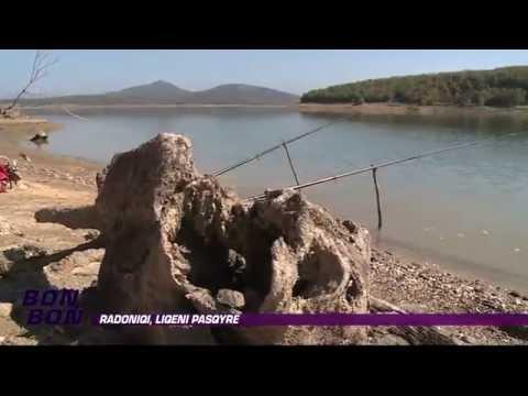 Radoniqi, liqeni pasqyre 17.10.2014