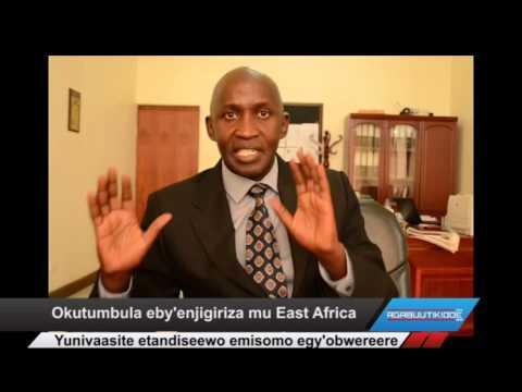 Okutumbula eby'enjigiriza mu East Africa