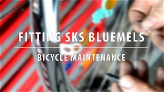 Installing SKS Bluemels Mudguards - My Favourite Commuter Mudguards