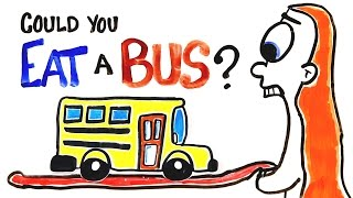 Can You Actually Eat A Bus?