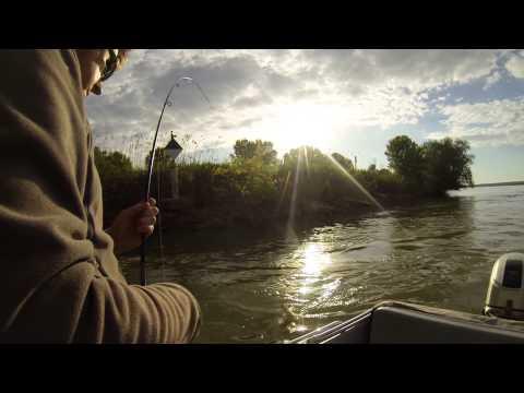 измаил прогноз рыбалки