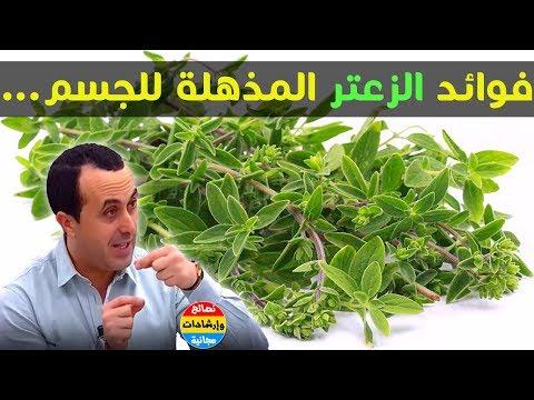 نبتة الزعتر فوائدها الكثيرة !! سر استعمالها لضمان أفضل للصحة مع الدكتور نبيل العياشي✔️ thumbnail