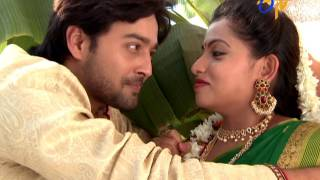 Naa Peru Meenakshi | 16th January 2017 | Latest Promo