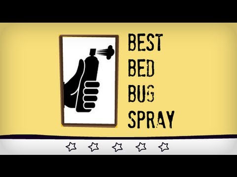 Best Bed Bug Killer Review   Learn How to Kill Bed Bugs Quickly
