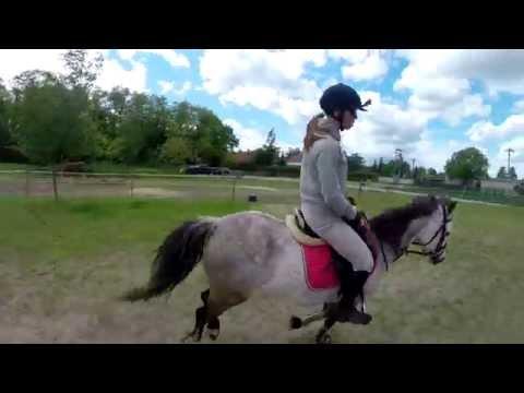 GoPro - Eva Samková a její koník Ramzes