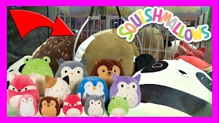 Which Giant Squishmallow Do We WIN From The CLAW MACHINE?