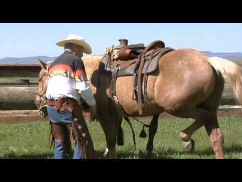 How to Western Saddle a Horse