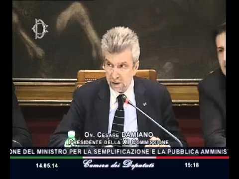 Roma - Audizione ministro Madia (14.05.14)