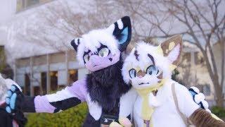 Atlantis's Japanese Meeting Of Furries 2018 Con Video (JMoF 2018)