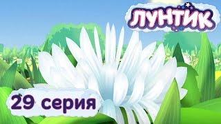 Лунтик и его друзья - 29 серия. Цветок