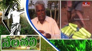Ideal Farmer Raja Goud Earn High Profits From Bottle gourd(Sorakaya) Cultivation | Nela Talli