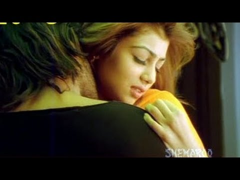Ayesha Takia's Hot Scene In Tarzan The Wonder Card Hd Scene video