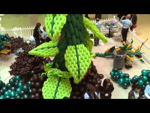 Balloon Manor 2014: The VERY Tall Tale of Jack and the Beanstalk - Time lapse construction