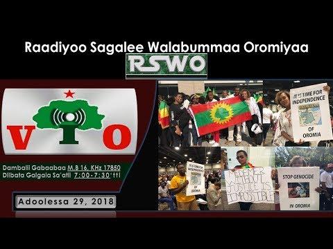 RSWO - Adoolessa 29, 2018: Mormii Hawwaniifi Shamarran Oromoon Washington DCtti Dr Abiyyirratti Ka'e thumbnail