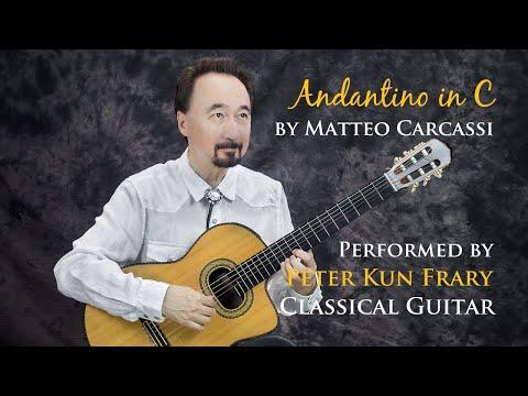 Маттео Каркасси - Andantino In C Major