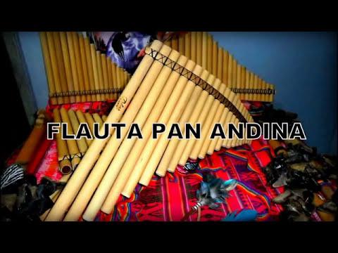 Hino CCB Flauta PAM Andina Tocado Completo