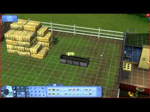 The Sims 3 Pets - Horse Training Tutorial Part 1 of 2