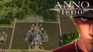 Anno 1800 Schnapps basic Layout from small to bigg and Bonus Schnapps and Worker Cloth Layout