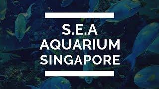 S.E.A. Aquarium Singapore   Resorts World Sentosa