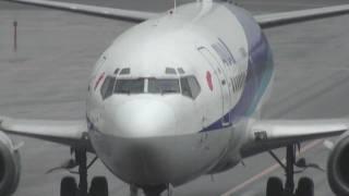 大館能代空港 ANA (Air Nippon) Boeing 737-500 JA305K 着陸 2010.11.28