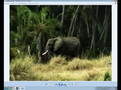 Programa para comprimir y descomprimir archivos gratis (7zip).