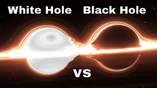 What Happens When a White Hole and a Black Hole Collide?