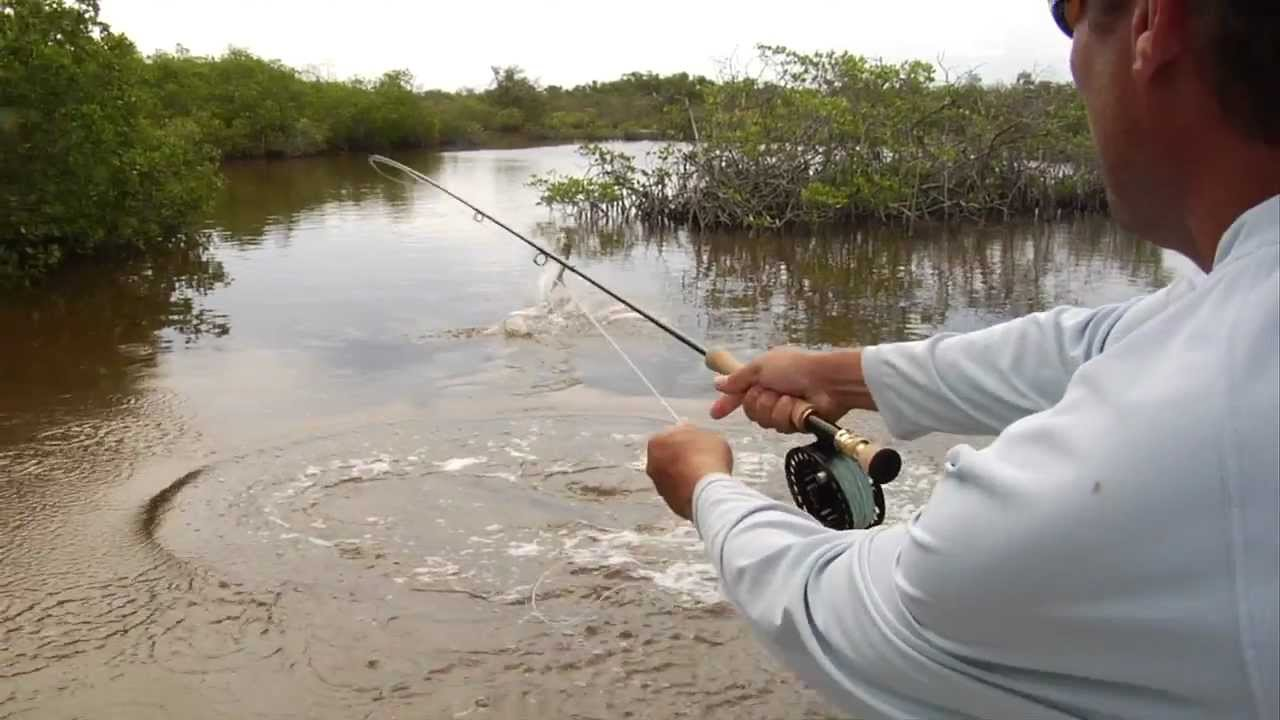 Fly fishing film tour off the grid fly fishing in for Fly fishing films