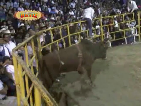 Los Destructores En Tulyehualco D.F. Charrito de San Gregorio Fracturado.!!