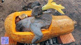 Gà Ác Nướng Trong Trái Bí Đỏ Khổng Lồ | Sinh Tồn Nơi Hoang Dã .Primitive Survival :Chicken Pumpkin
