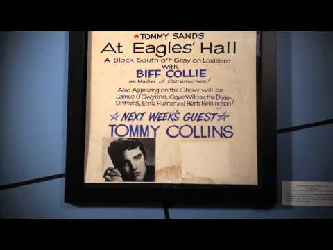 The Rock and Roll Hall of Fame presents All Access: The Story of Rock - Elvis Presley