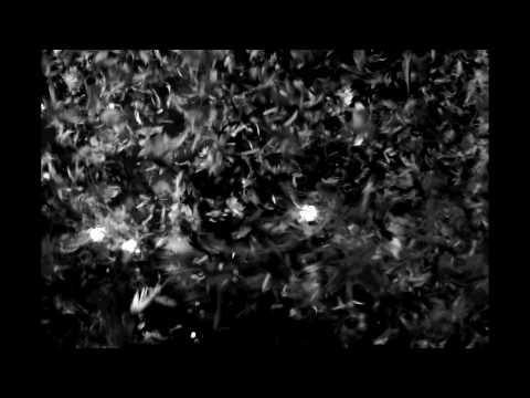 Enochian Crescent - Lyijysiipi