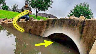 The STORM DRAIN is HIDING a BIG FISH!!