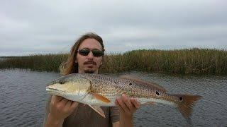 Fishing Apalachicola Florida