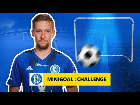 MiniGoal Challenge: David Houska