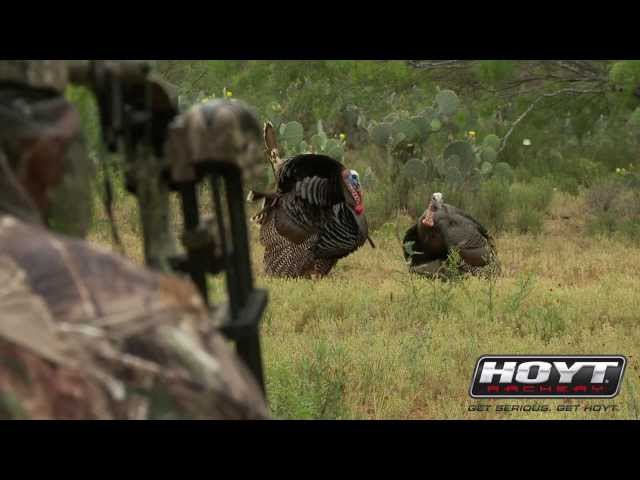 Turkey Hunting: Secret Decoy Tricks That Drive Gobblers Insane