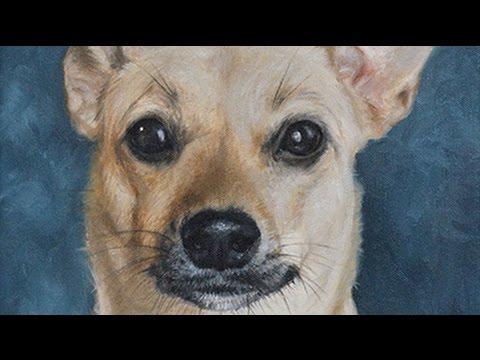 Dog portrait, oil painting of 'Winnie', time-lapse