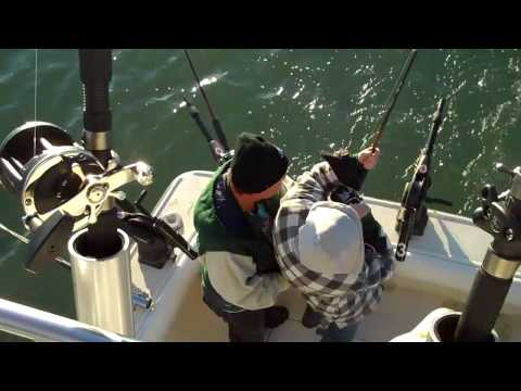 Lake Michigan Salmon Fishing Sheboygan Wisconsin, Catching Big Fish in Sheboygan