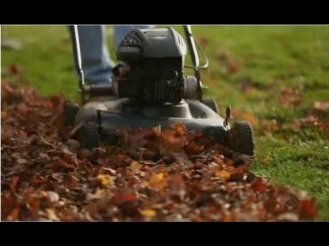 Lawn Care -- Tips for Mulching Leaves