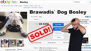 PUTTING OUR DOG UP FOR SALE! *Crazy Reaction*