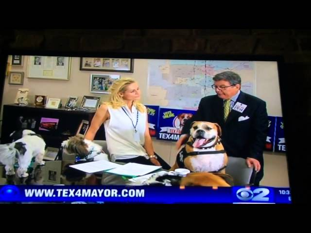 Tex's Mayoral Campaign Highlighted On 2 News Utah